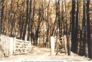 The Duckett family gateway Old Coach Rd after January 1962 fires